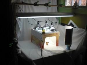Happy Bungalow DIY lighting setup with whitebox