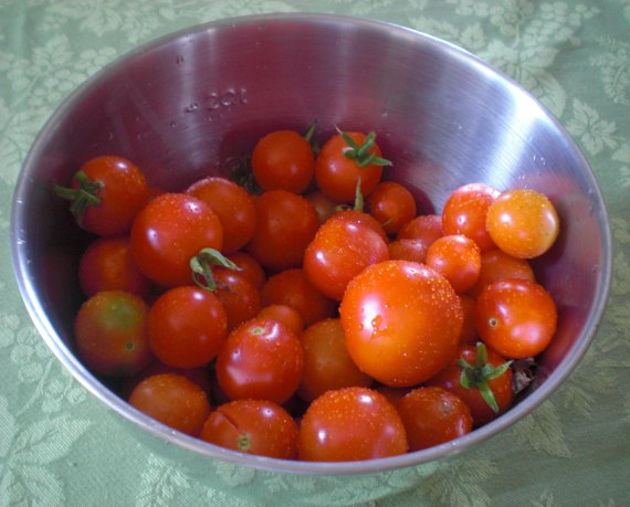 Happy-Bungalow-backyard-garden-tomatoes-570