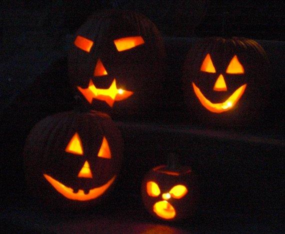 Happy-Bungalow-Halloween-Pumpkins-570