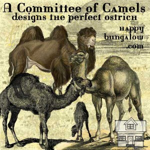 Committee of Camels designs the perfect ostrich logo