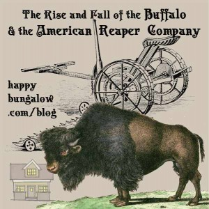The Buffalo and the American Reaper Company-Happy Bungalow
